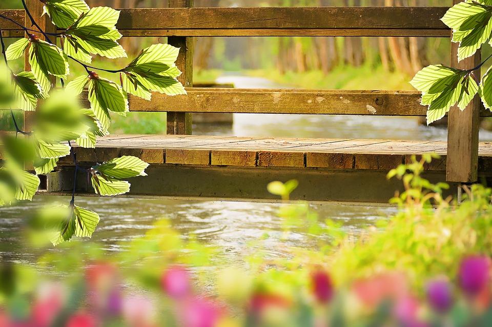 Nature, Spring, Bridge, Water, Aesthetic, Flowers