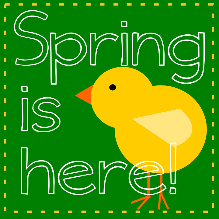 Yellow, Bird, Green, Nature, Spring