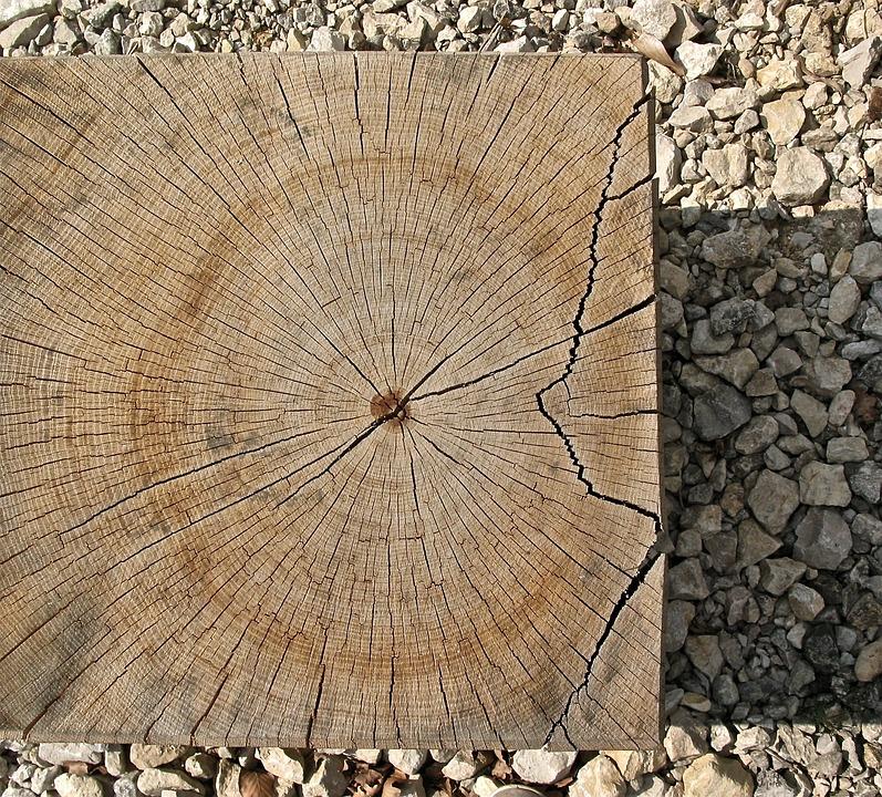 Annual Rings, Wood, Sawed Off, Log, Like, Square, Crack