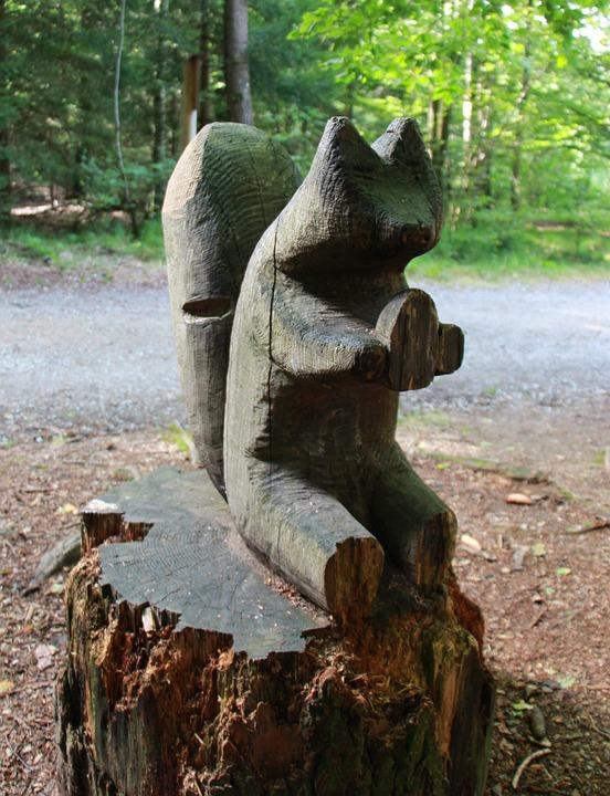 Squirrel, Wood, Forest