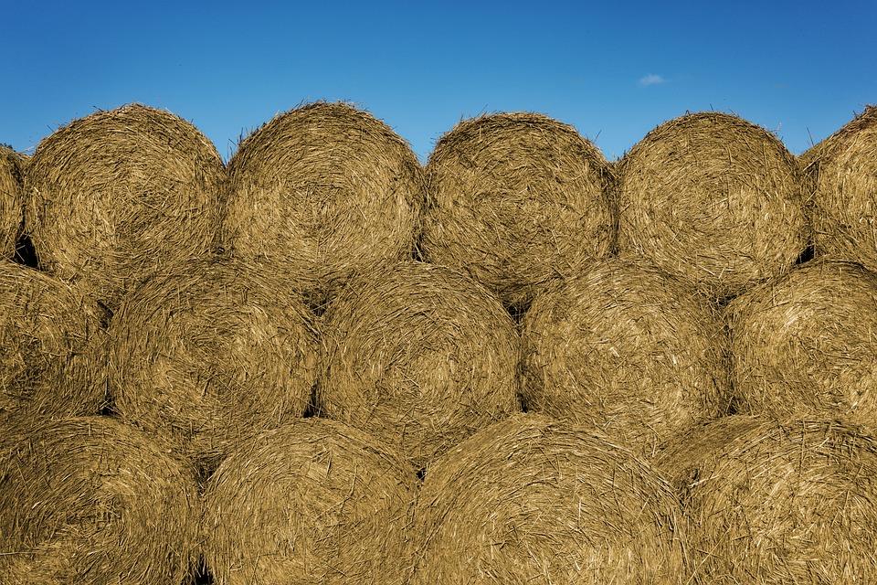 Straw, Hay, Bales, Harvest, Crop, Fodder, Farm, Stack