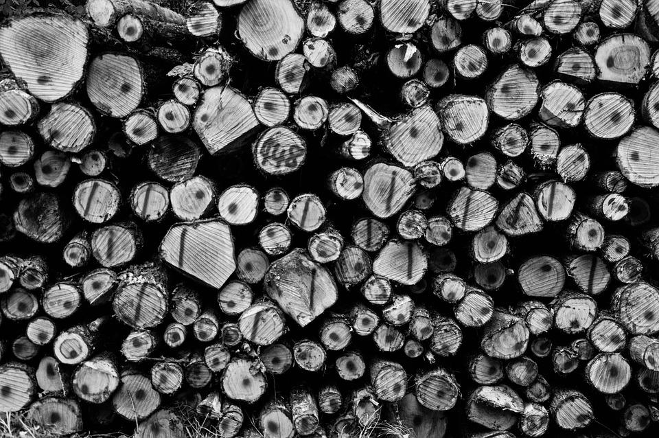 Stack, Wood, Firewood, Holzstapel, Nature, Stacked, Log