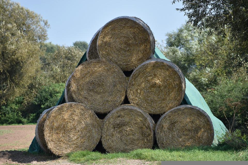 Hay, Round Bales, Harvest, Bales, Stack, Straw Bales