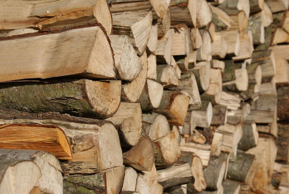 Wood, Stack, Trunks, Stacked, Wood Pile