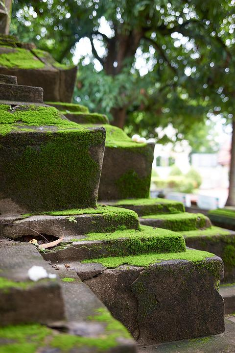 Temple, Stairs, Moss, Ruins, Steps