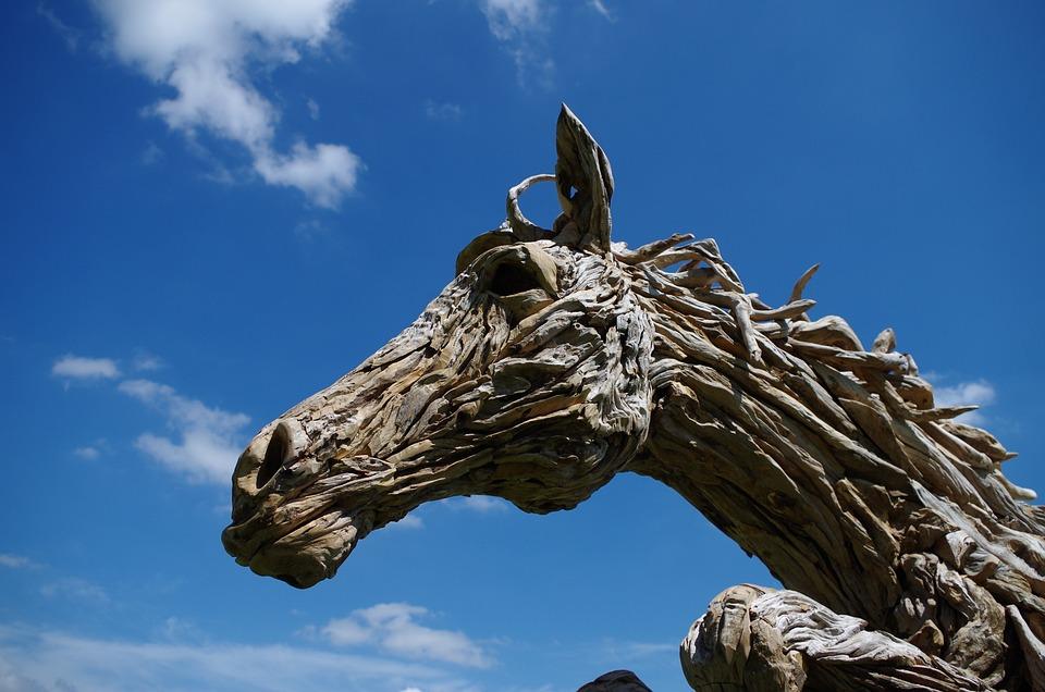 Horse, Sky, Wood, Driftwood, Animal, Stallion, Nature