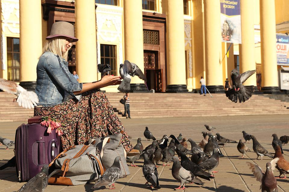 Pigeons, Station, Girl, Suitcases, Stand By, Travel