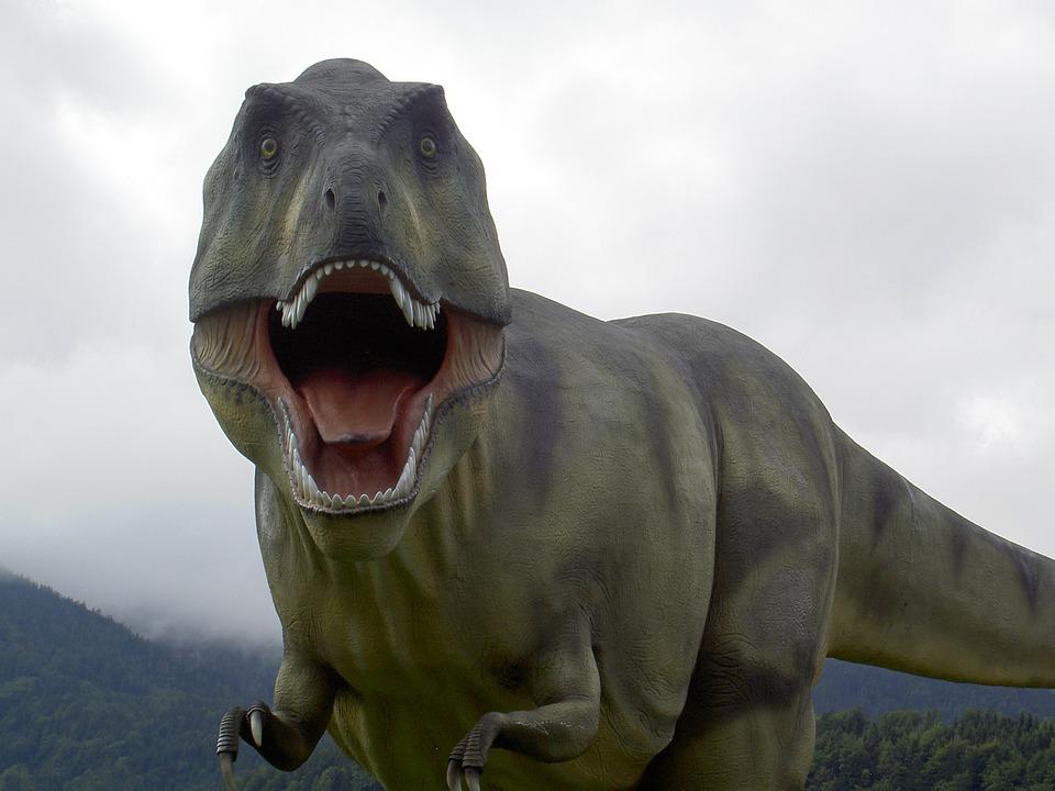 T Rex, Dinosaur, Park, Roaring, Standing, Fear, Brutal