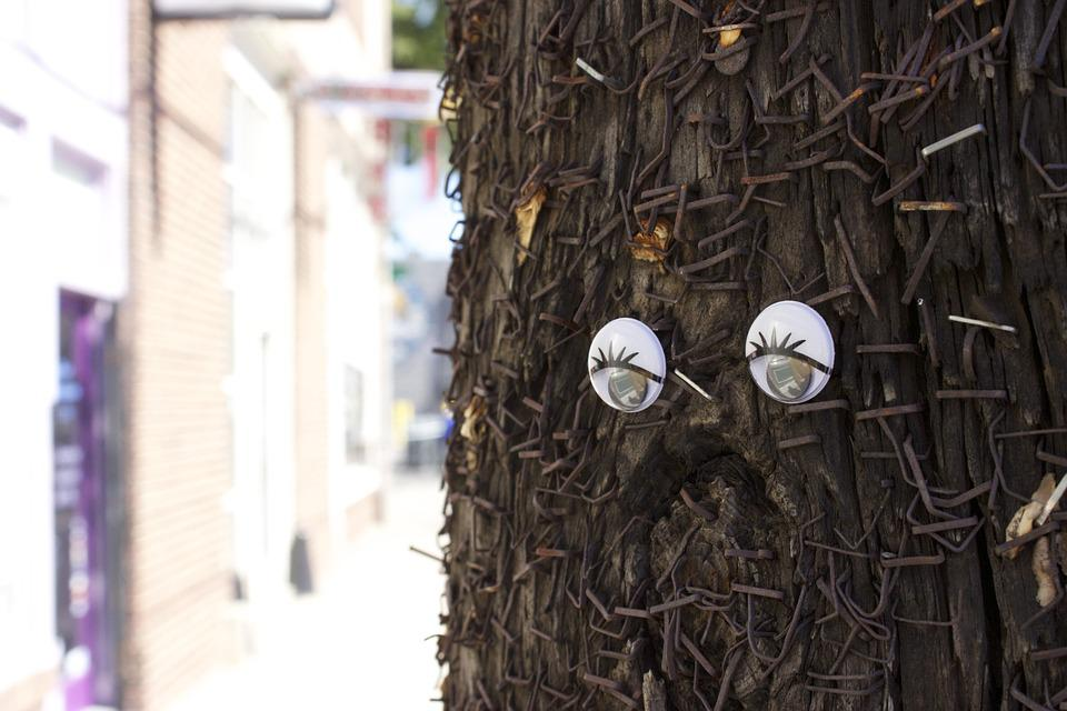 Wiggle Eyes, Old Telephone Pole, Staples