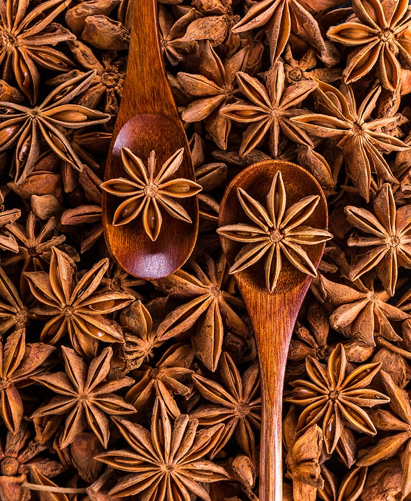 Star Anise, Spices, Spoon, Anise, Seed Pod, Aromatic