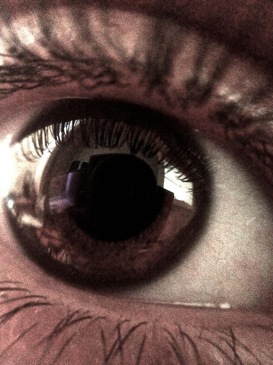 Eye, Look, Fear, Gaze, Stare, Brown, Close-up, Face