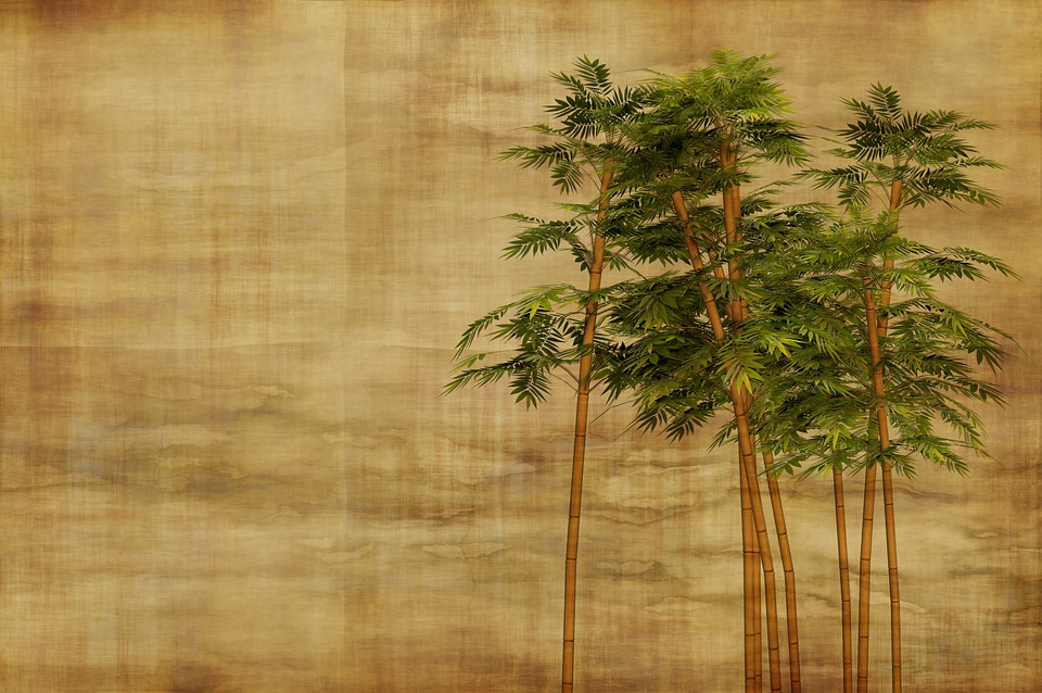 free photo stationery bamboo background wallpaper leaves max pixel