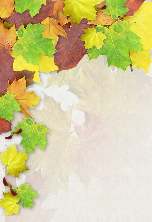 Leaves, Colorful, Autumn, Stationery, Decoration