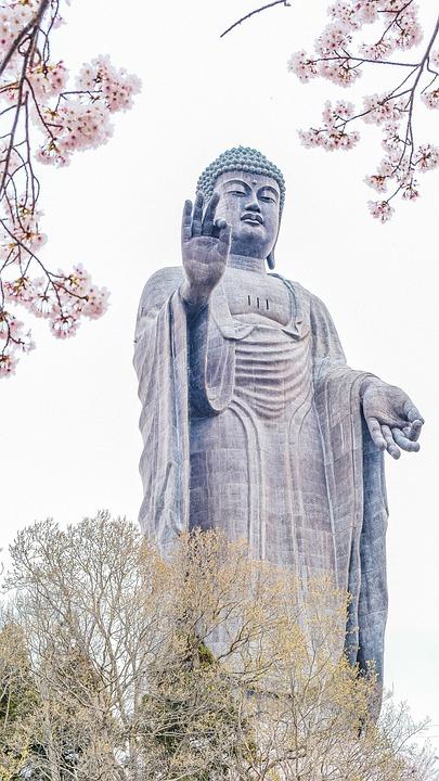 Tree, Branches, Buddha, Statue, Sculpture, Sakura