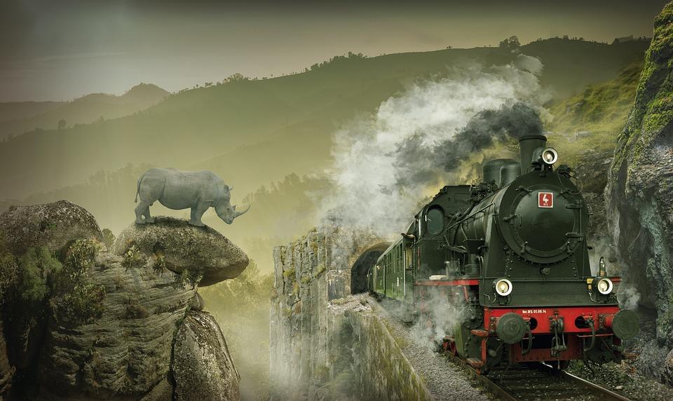 Locomotive, Rhino, Train, Steam Train, Railroad