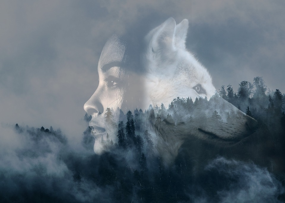 Girl, Wolf, Double Exposure, Forest, Steamy, Fog, Woman