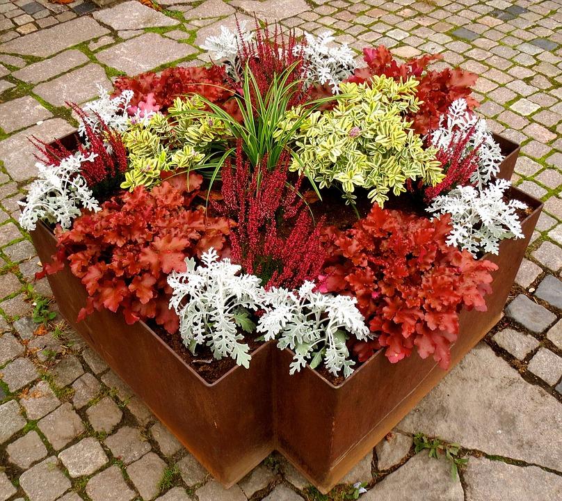 Fall Planting, Alunrot, Silverek, Grass, Rusty, Steel