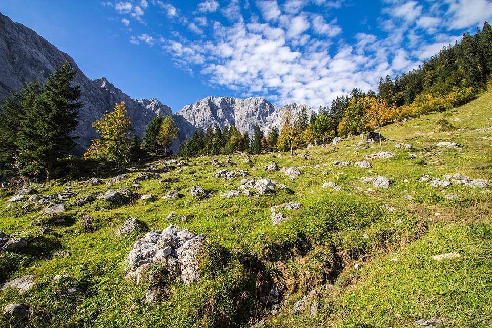 Karwendel, Tyrol, Austria, Mountains, Meadow, Steinig