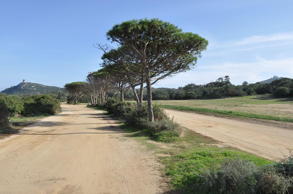 Sardinia, Landscape, Steinig