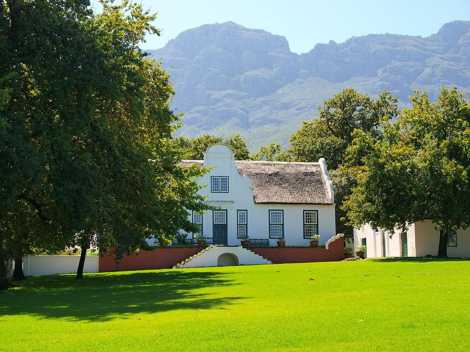 South Africa, Stellenbosch, Winemaker