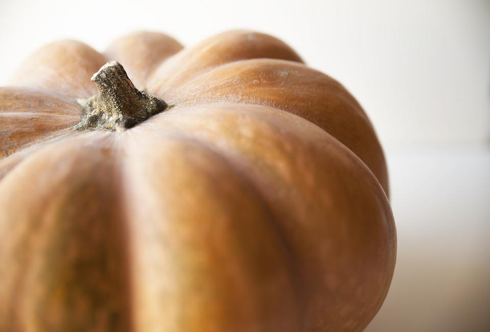 Pumpkin, Vegetable, Stem, Orange