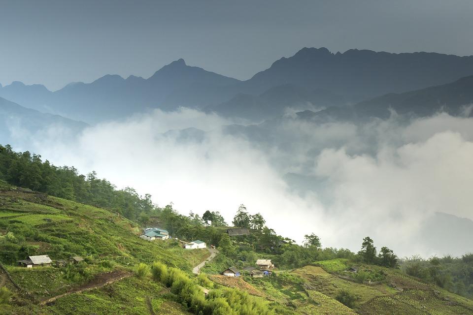 Vietnam, Sapa, Rice, Field, Step, Natural, People