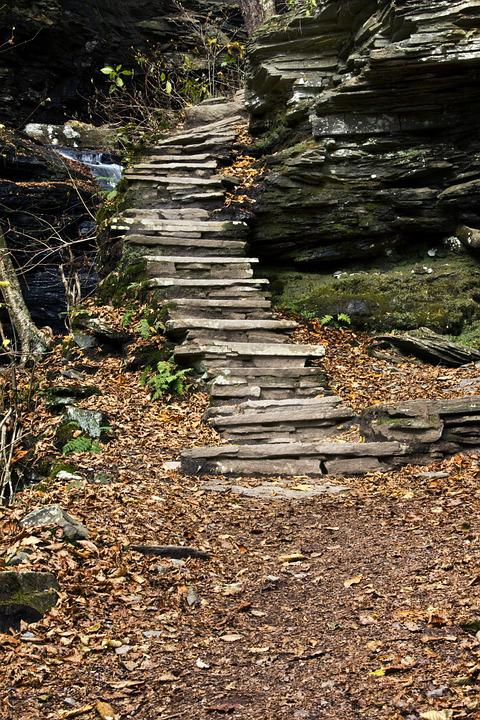 Steps, Stair, Stairway, Climb, Trail
