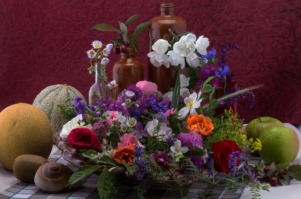 Still Life, Flowers, Composition, Wild Flower, Melons