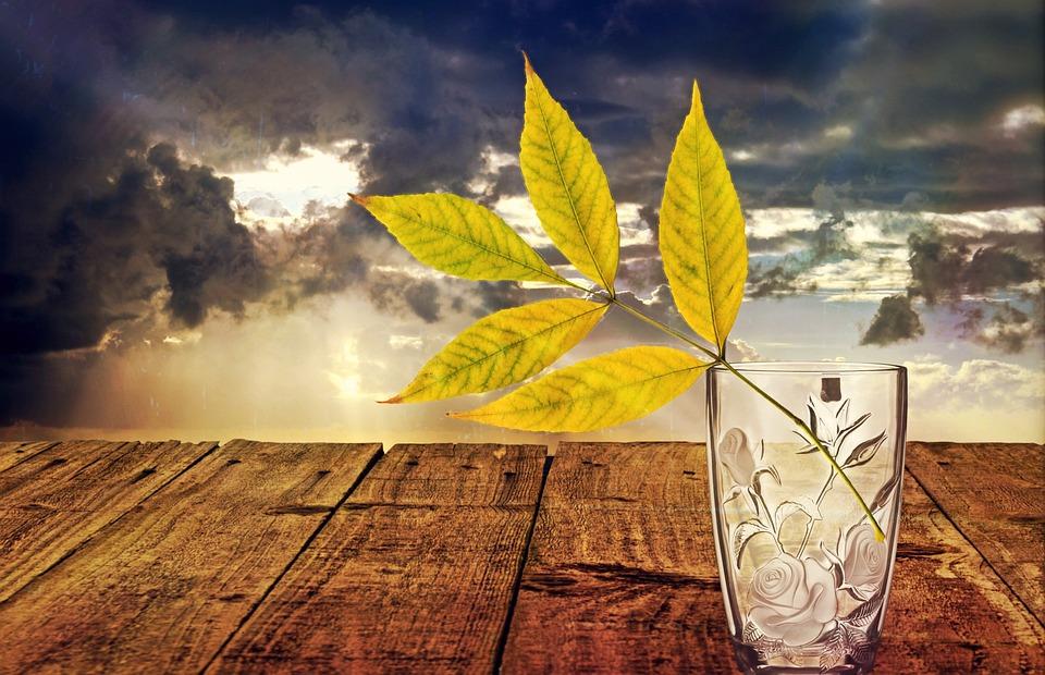Still Life, Glass, Vase, Decoration, Deco, Flower Vase