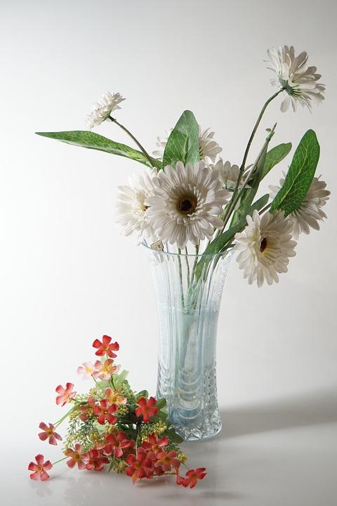 Still Life, Flower, Photography