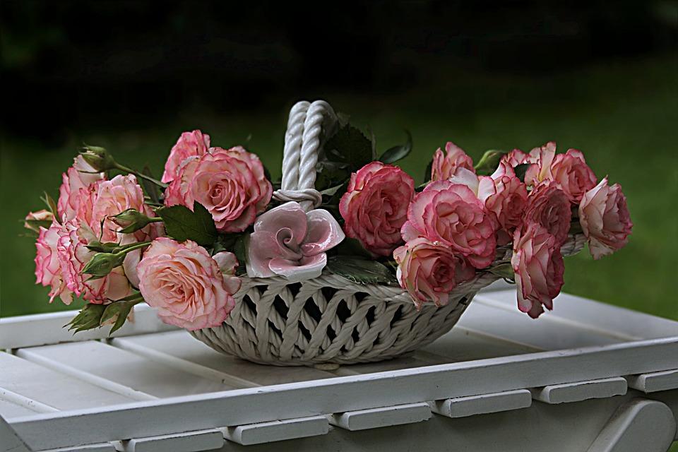 Still Life, Roses, Pink, Shell, Garden, Basket