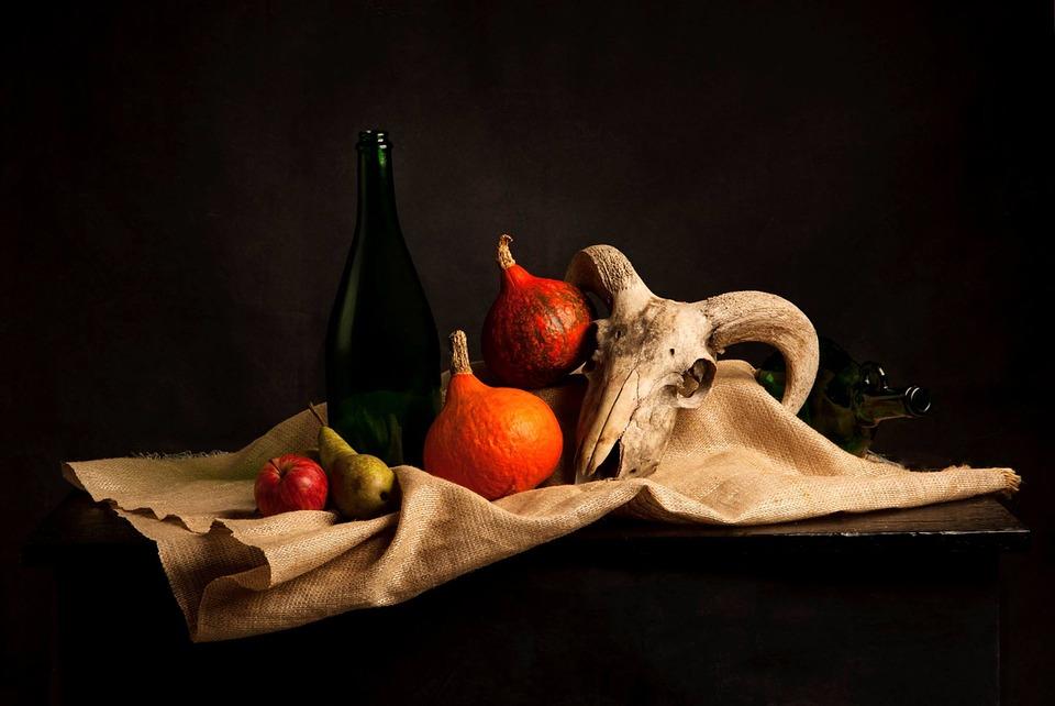 Still Life, Skull, Studio, Composition, Simplicity