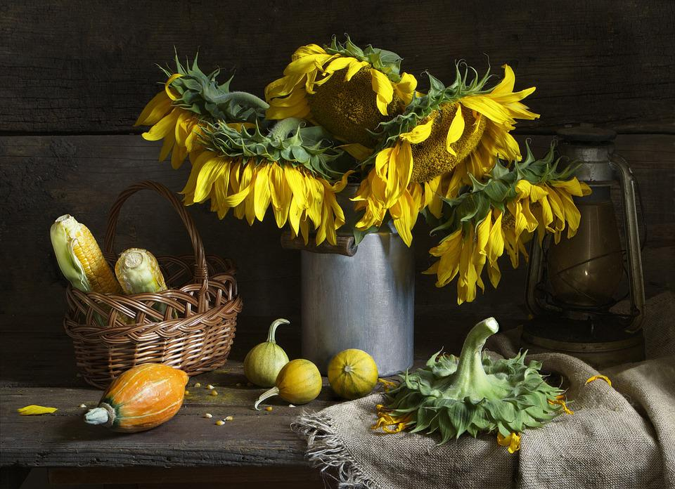 Still Life, Sunflower, Bouquet