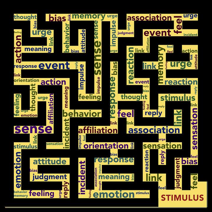 Mindset, Stimulus, Response, Emotion, Reaction