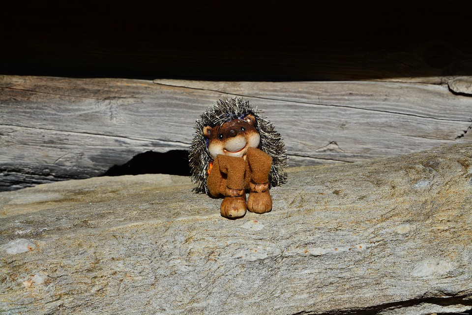 Hedgehog, Fig, Stone