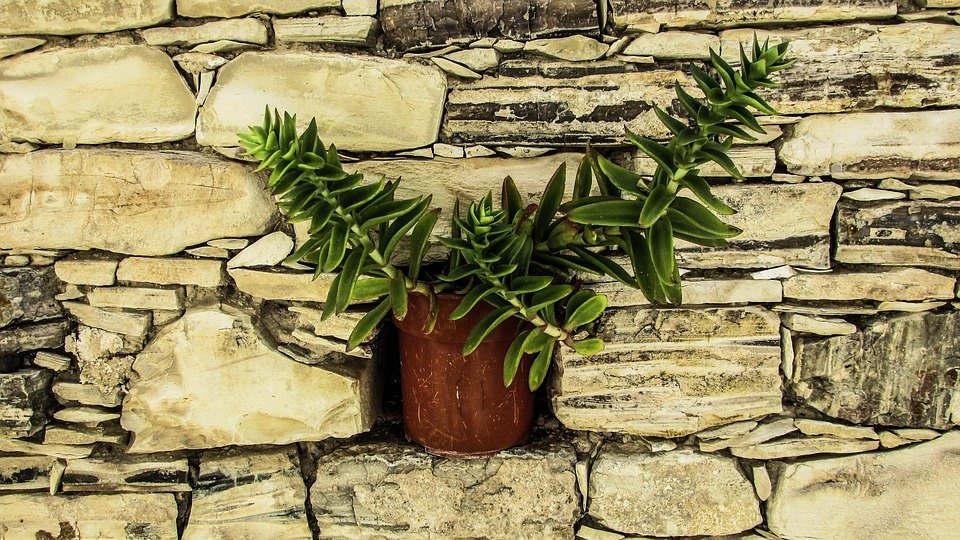 Free photo Stone Flower Pot Decoration Village Wall Cyprus - Max Pixel