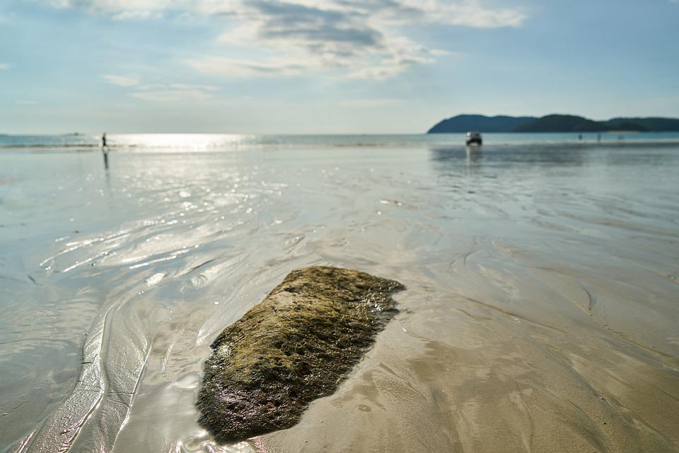 Landscape, Marine, Stone, Kennedy, Views Of The Sea