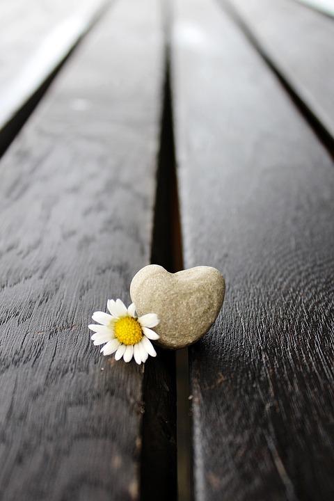 Stone, Stone Heart, Heart, Love, Romantic, Nature