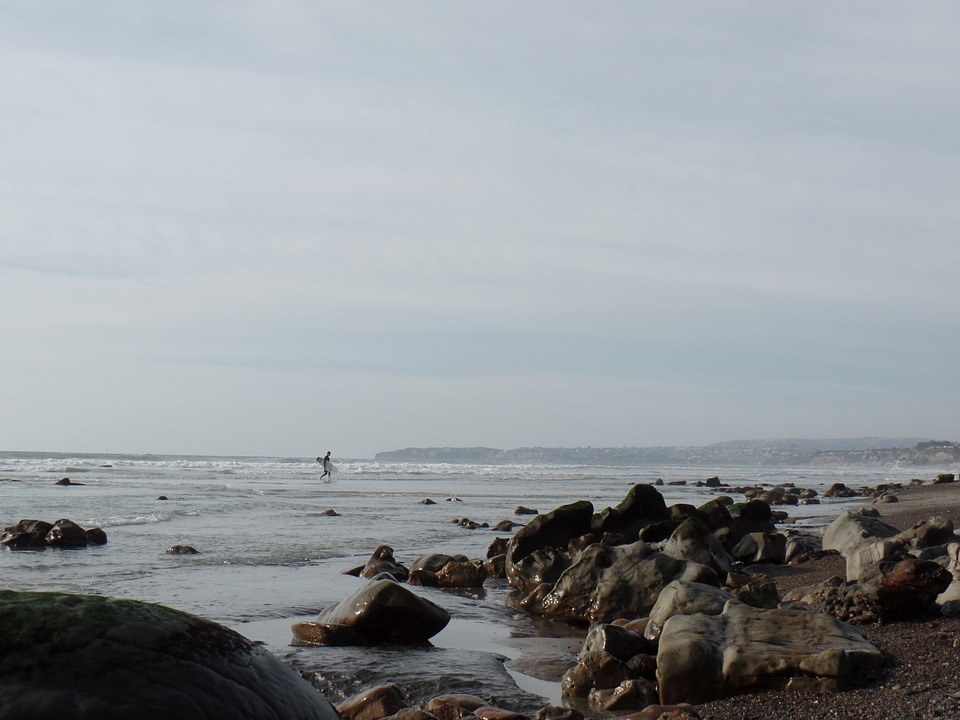 Surfer, Rocks, Beach, Surfing, Stone, Low Tide