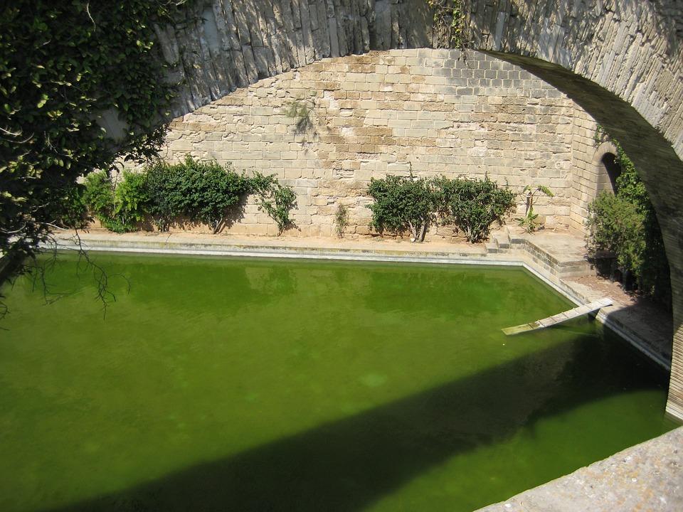Bridge, Arc, Tub, Stone Wall, Green, Water, Spain