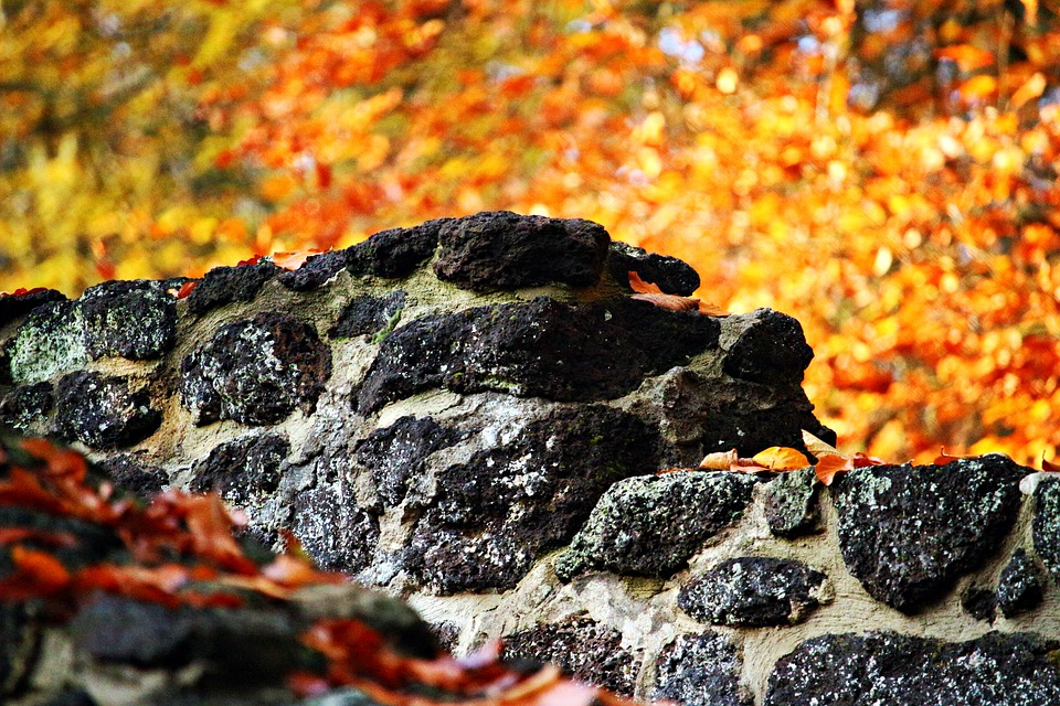 Wall, Stone, Feilenmoos, Stone Wall, Autumn