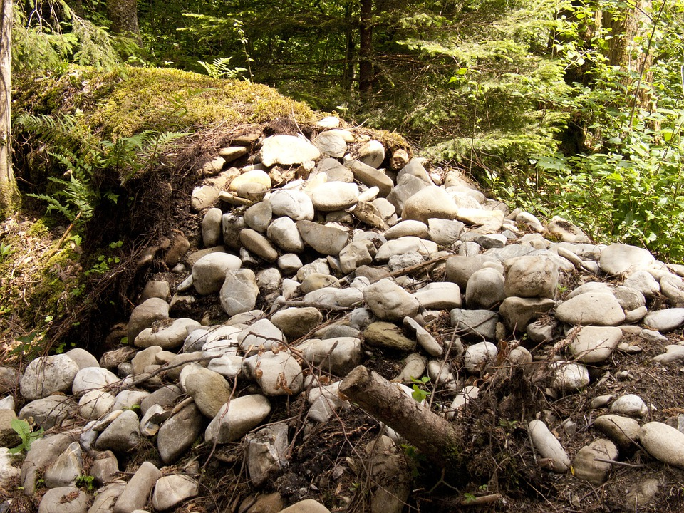 Stones, Wall, Forest, Stone Wall