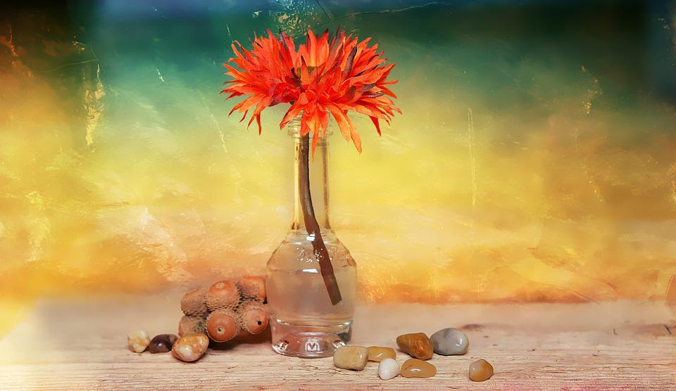 Flower, Dekoblume, Stones, Vase, Decorative Glass