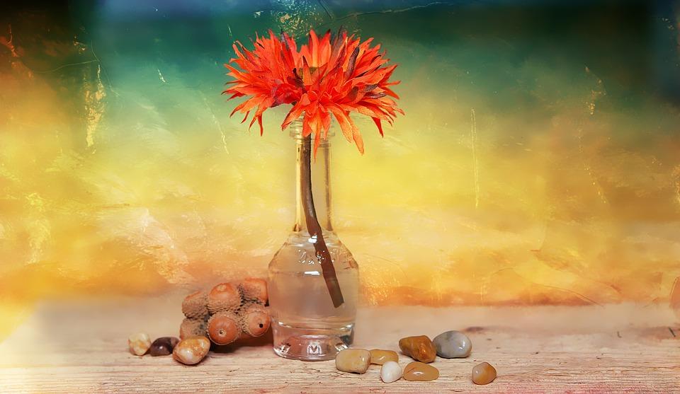 Flower, Dekoblume, Stones, Vase, Decorative Glass