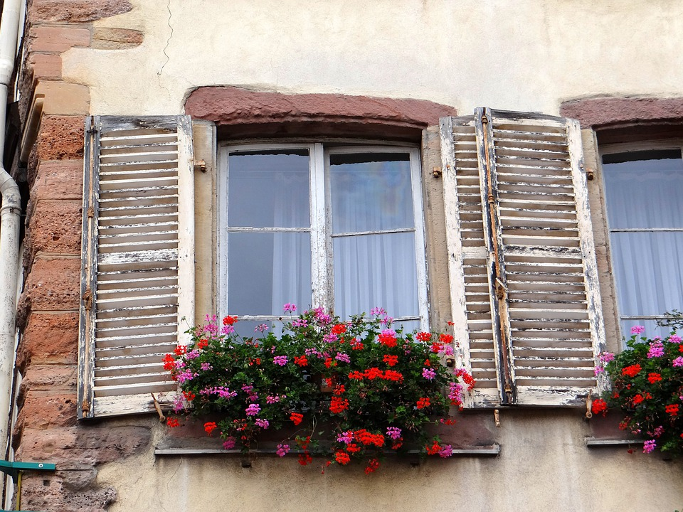 Window, Shutters, Flowers, Stones, Picturesque