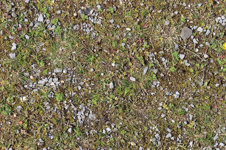 Ground, Stones, Grass, Pebble, Steinchen, Earth, Green