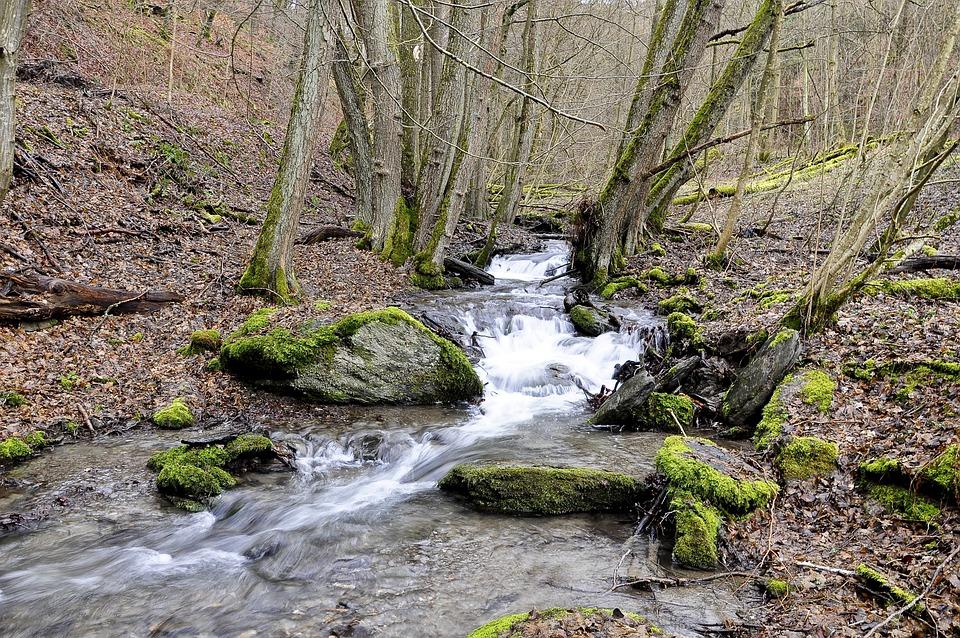 Water, Nature, Bach, Landscape, Flow, Stones