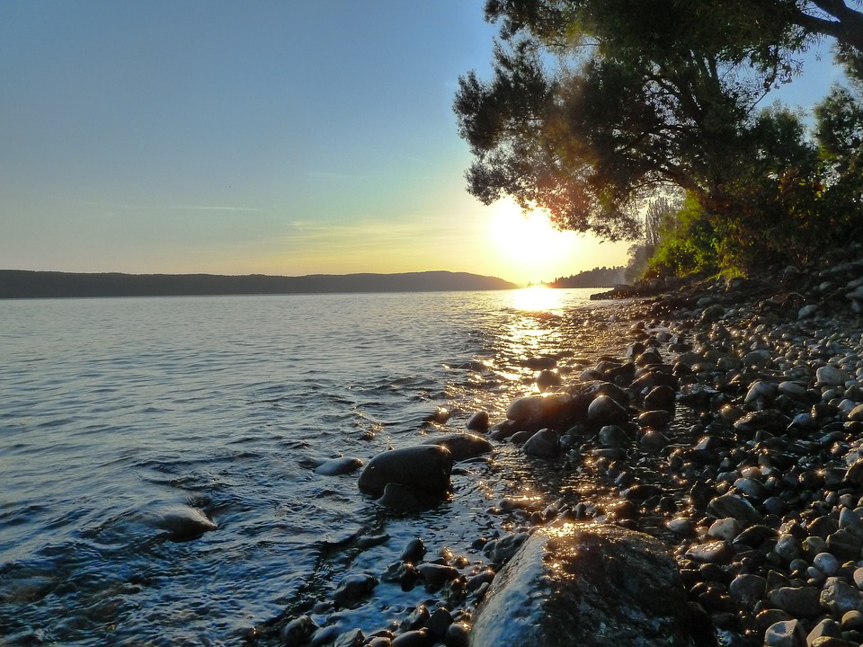 Yellow, Orange, Water, Rock, Stones, Lake Constance