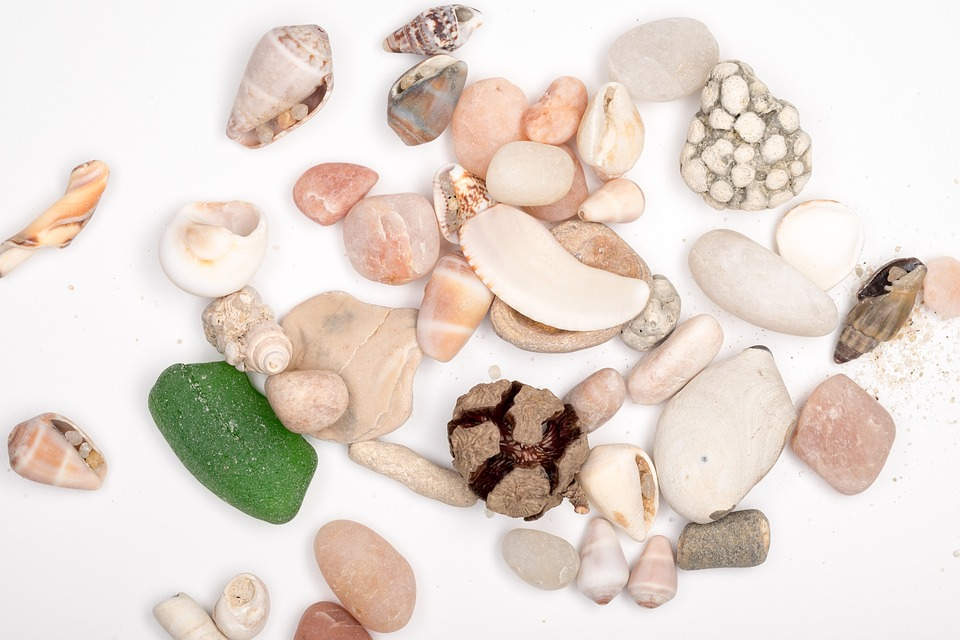 Stones, Sea stones, Sea, Shell, Sea sand