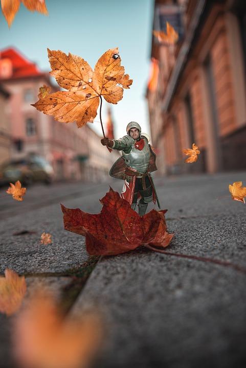 Nature, Autumn, Leaves, Warrior, Fantasy, Tree, Stop